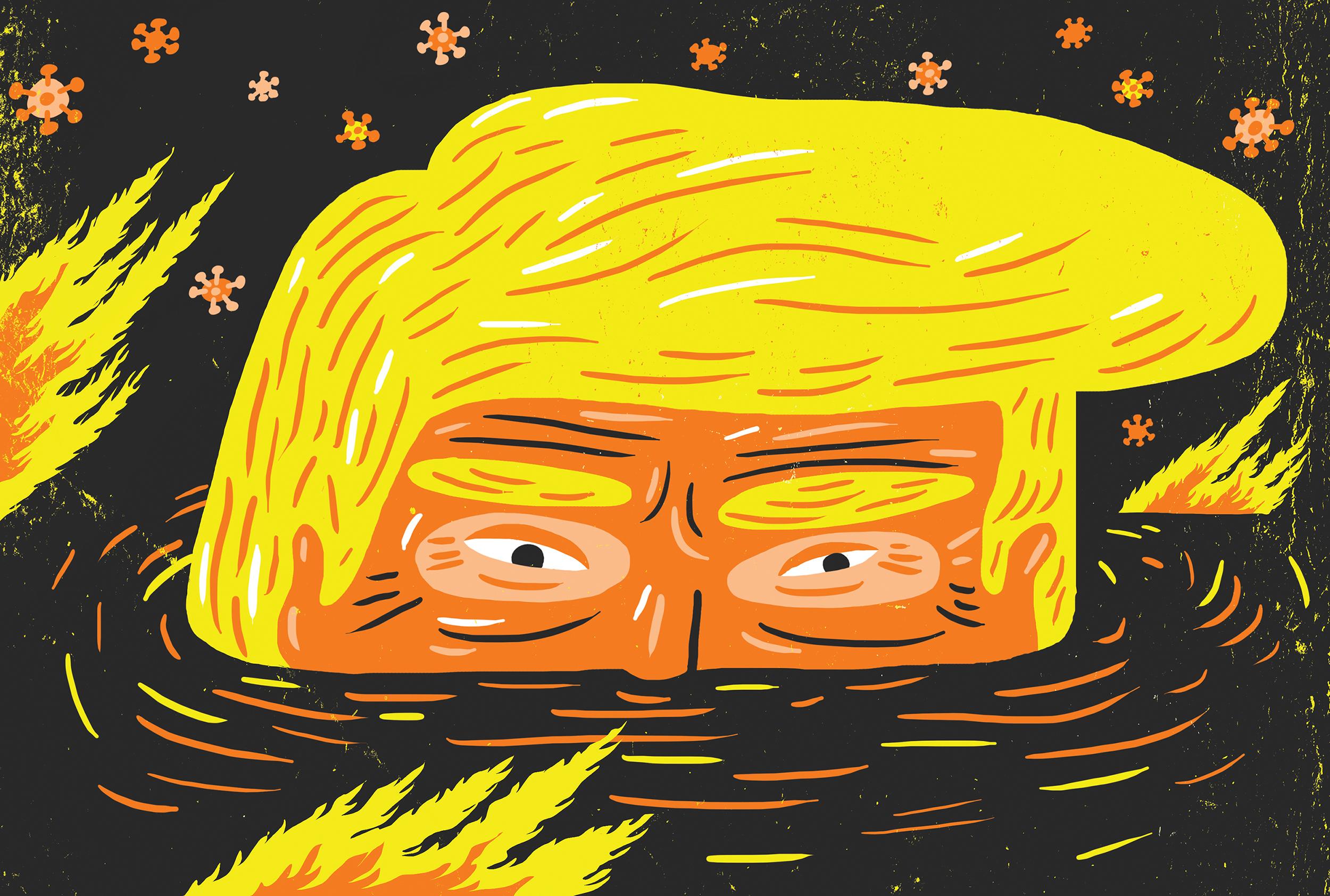 Theispot Com Oivind Hovland Illustrates The Trump Swamp